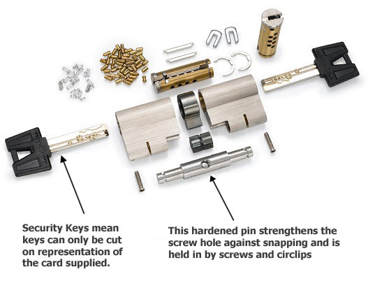 Exploded view of a DL09 explaining what is lock snapping